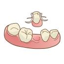 西尾市 歯医者 横須賀歯科診療所 入れ歯